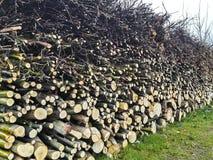 树干被分层堆积在草的木片断 免版税库存图片