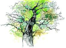 树干 向量例证