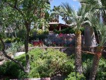 树庭院在城市 免版税库存照片