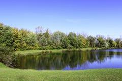 树排行了秋天的镇静蓝色池塘 图库摄影
