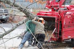 树撤除和工作者移动的树干对磨床 库存图片
