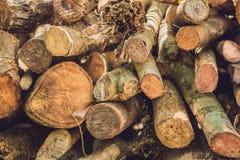 树日志特写镜头本质上,堆木日志准备好在冬天在森林里,木柴作为一可再造能源来源waitin 库存照片