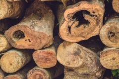 树日志特写镜头本质上,堆木日志准备好在冬天在森林里,木柴作为一可再造能源来源waitin 库存图片