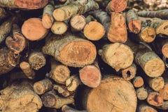 树日志特写镜头本质上,堆木日志准备好在冬天在森林里,木柴作为一可再造能源来源waitin 免版税库存图片