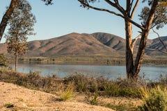 树有湖和山背景 图库摄影