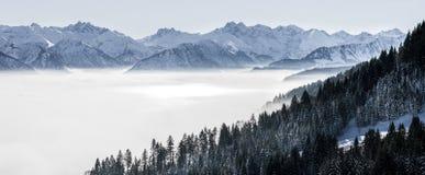 树木丛生的山坡和山脉在低谷使模糊与被覆盖的常青针叶树剪影  免版税库存图片