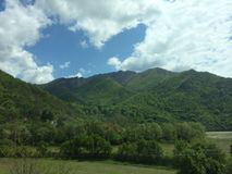 树木丛生的山 库存图片