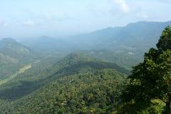 树木丛生的山 免版税库存照片