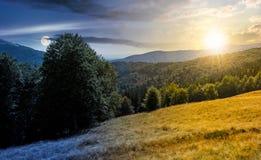 树木丛生的日夜小山概念的草甸 免版税库存图片