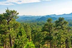 树木丛生的风景在南达科他 免版税库存图片