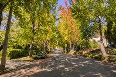 树木成行街道在住宅邻里在一晴朗的秋天天 库存照片