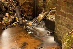 树木繁茂残破的水坝的河 库存照片