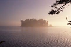 树木繁茂海岛的湖 图库摄影