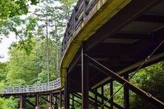 树木繁茂的天桥 免版税库存图片