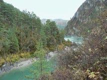 树木繁茂的山的河 免版税库存照片