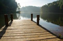 树木繁茂的桥梁 库存图片