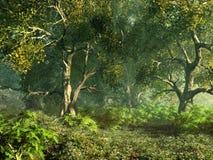 树木繁茂的草甸 免版税库存图片