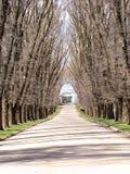 树木繁茂的路径 免版税库存图片