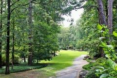 树木繁茂的道路在庭院里 库存照片
