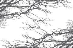 树枝传染媒介 向量例证