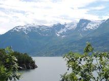 树枝有海湾和多雪的山的背景 免版税库存照片