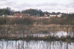 树枝的反射在秋天上色了水的葡萄酒r 图库摄影