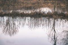 树枝的反射在秋天上色了水的葡萄酒r 免版税库存图片