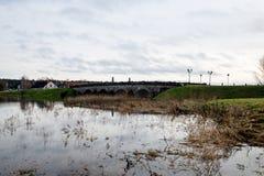 树枝的反射在秋天上色了水 免版税库存照片
