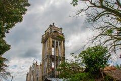 树枝背景的宽容大教堂在菲律宾 Pandan,班乃岛 免版税库存图片