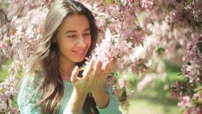 树枝花的美丽的可爱和少妇在春天 股票录像