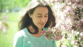 树枝花的美丽的可爱和少妇在春天 股票视频