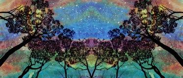 树树丛在极光天空下 免版税库存图片