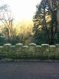 树桥梁公园冬天冷的石霜 免版税库存照片