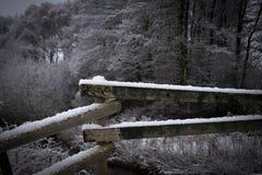 树桥梁在瑞典 库存图片