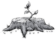 树桩树苗 免版税库存图片