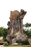 树桩模型 库存照片