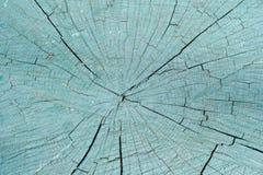 树桩的被绘的部分 特写镜头 纹理 库存照片