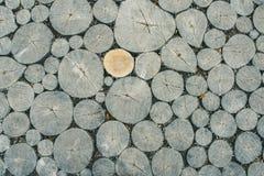 树桩纹理 图库摄影