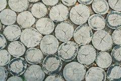 树桩纹理 库存照片