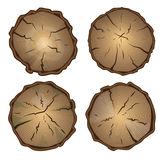 树桩,与年轮的圆的裁减 免版税库存图片