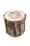树桩 免版税库存图片