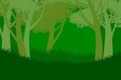 树森林场面自然背景 库存照片