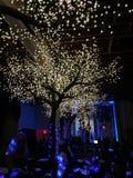 树照明设备在餐馆 免版税库存照片