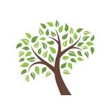 在白色背景隔绝的传染媒介树 免版税图库摄影