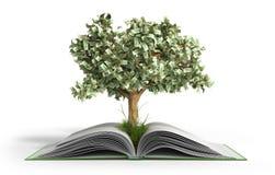 树生长从与硬币的书A大开放书的和树Readi 皇族释放例证
