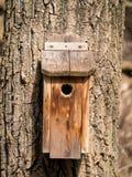 树的鸟房子 免版税库存图片