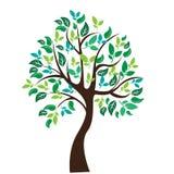 树的传染媒介例证在白色背景的- 免版税库存图片