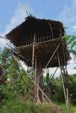 树的传统Koroway房子 库存图片