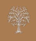 树的单调剪影 免版税图库摄影