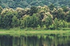 树的反射在水的在有绿色自然和山的一个池塘 库存图片